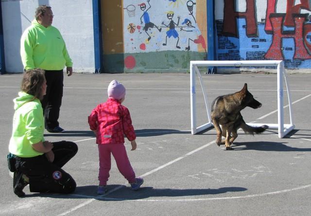 Kinološka urica z reševalnimi psi